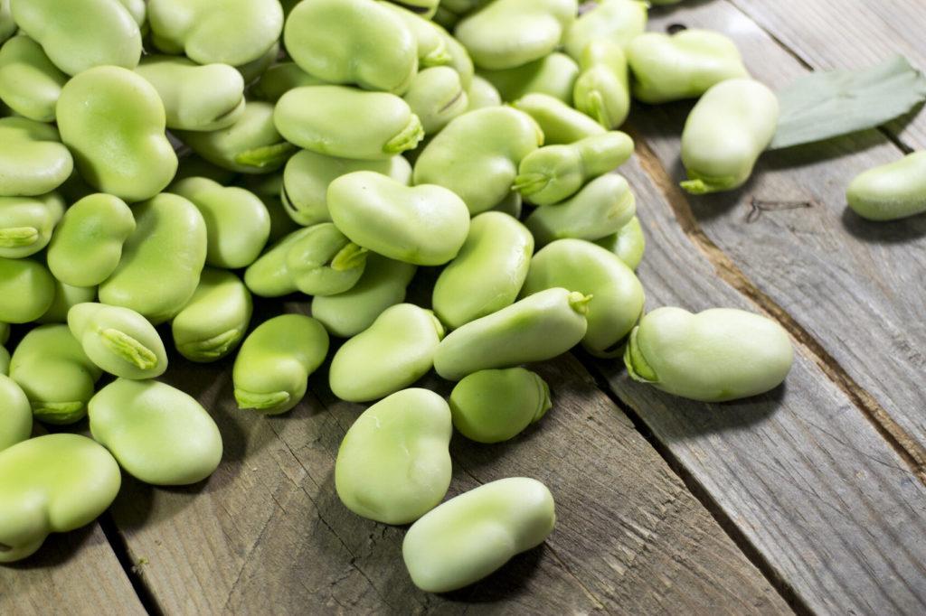 Bób warzywo – poznaj jego właściwości
